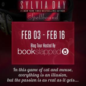 Bookslapped blog tour
