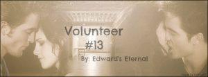 volunteer13banner