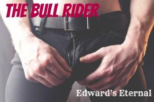 bull-rider banner